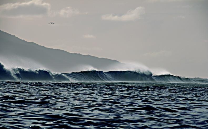 CC05 by Whitt Birnie. Reef surf, Tahiti, Moorea