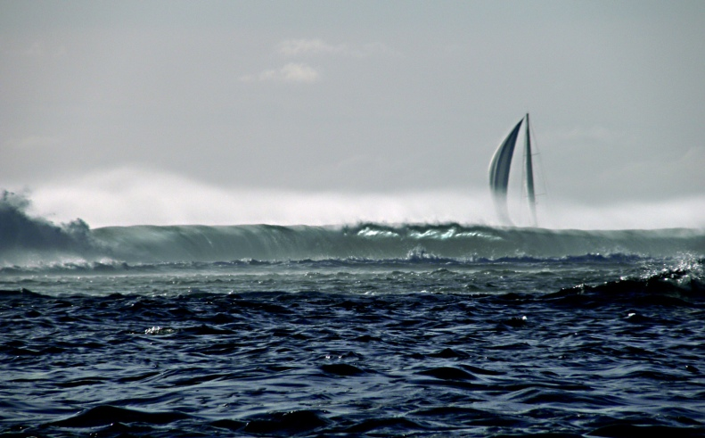 CC07 by Whitt Birnie. Outsider, beyond the reef