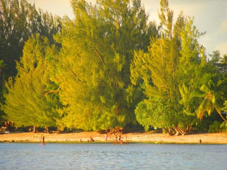 At the lagoons edge